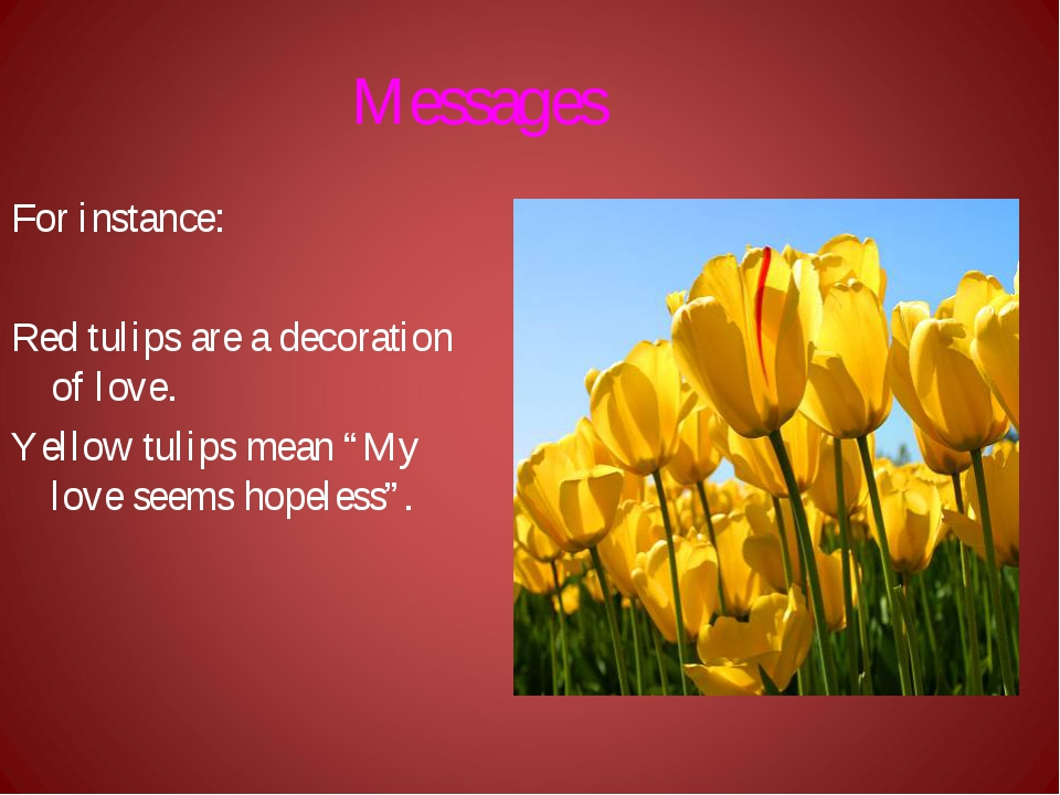 Messages For instance: Red tulips are a decoration of love. Yellow tulips mea...