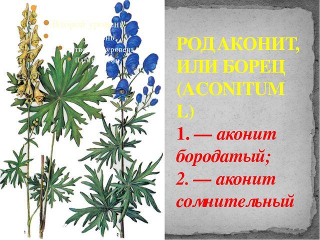 РОД АКОНИТ, ИЛИ БОРЕЦ (ACONITUM L) 1. — аконит бородатый; 2. — аконит сомните...