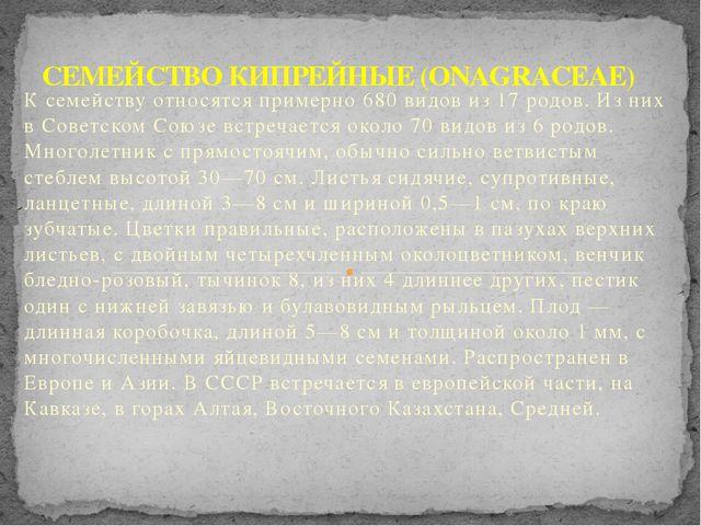 К семейству относятся примерно 680 видов из 17 родов. Из них в Советском Союз...