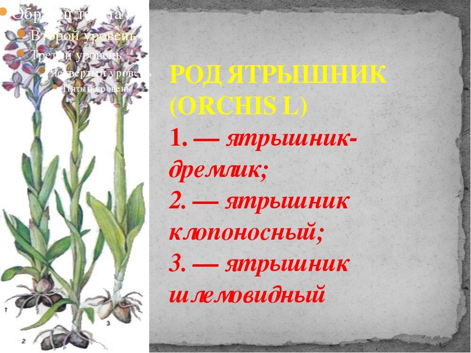 РОД ЯТРЫШНИК (ORCHIS L) 1. — ятрышник-дремлик; 2. — ятрышник клопоносный; 3....