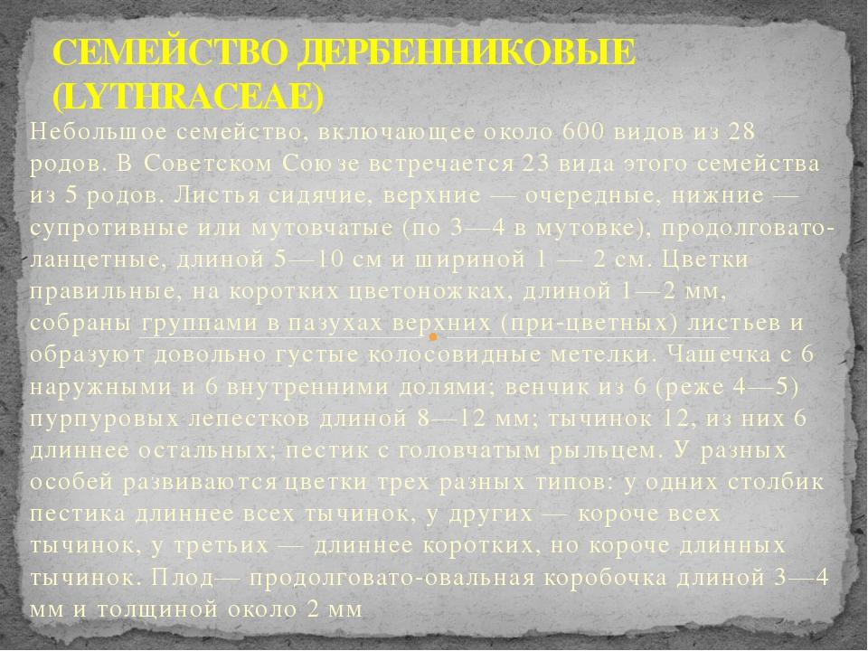Небольшое семейство, включающее около 600 видов из 28 родов. В Советском Союз...