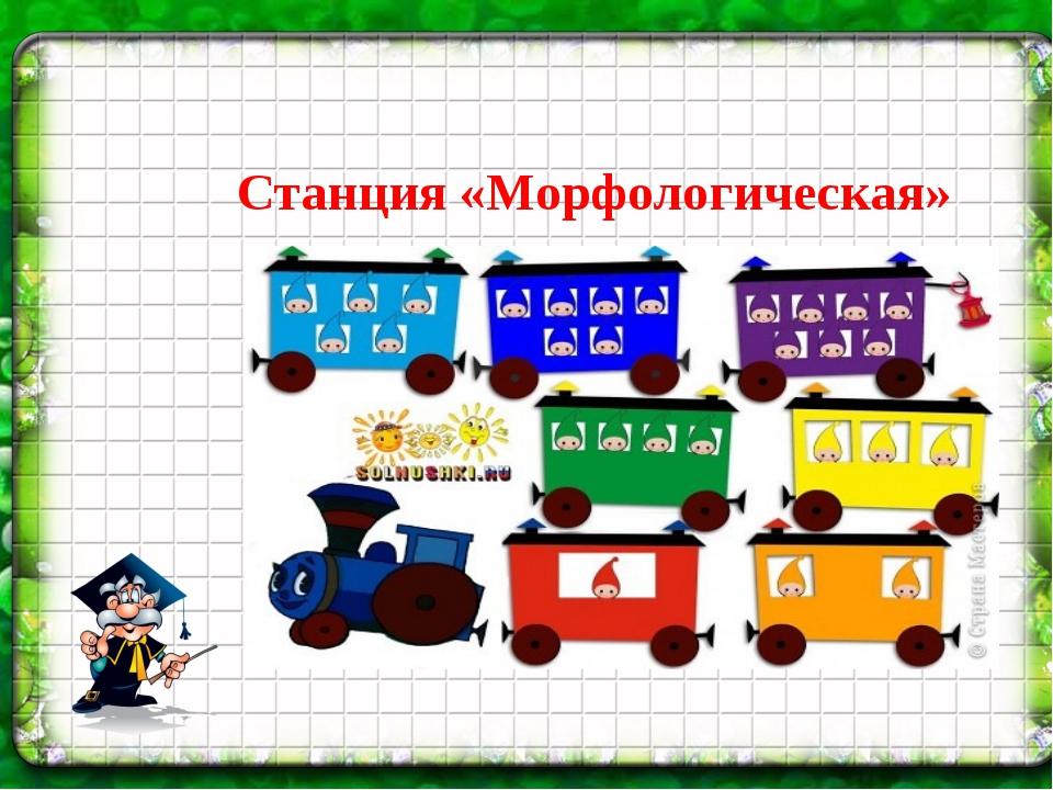 Станция «Морфологическая»