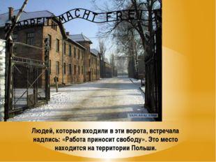 Людей, которые входили в эти ворота, встречала надпись: «Работа приносит своб