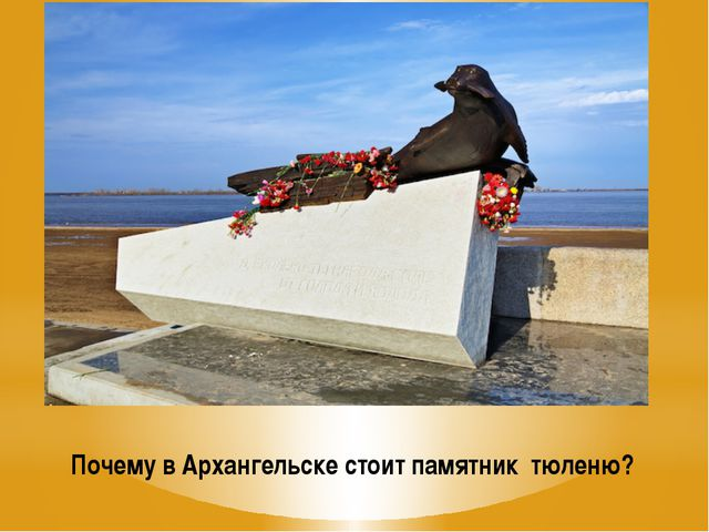 Почему в Архангельске стоит памятник тюленю?