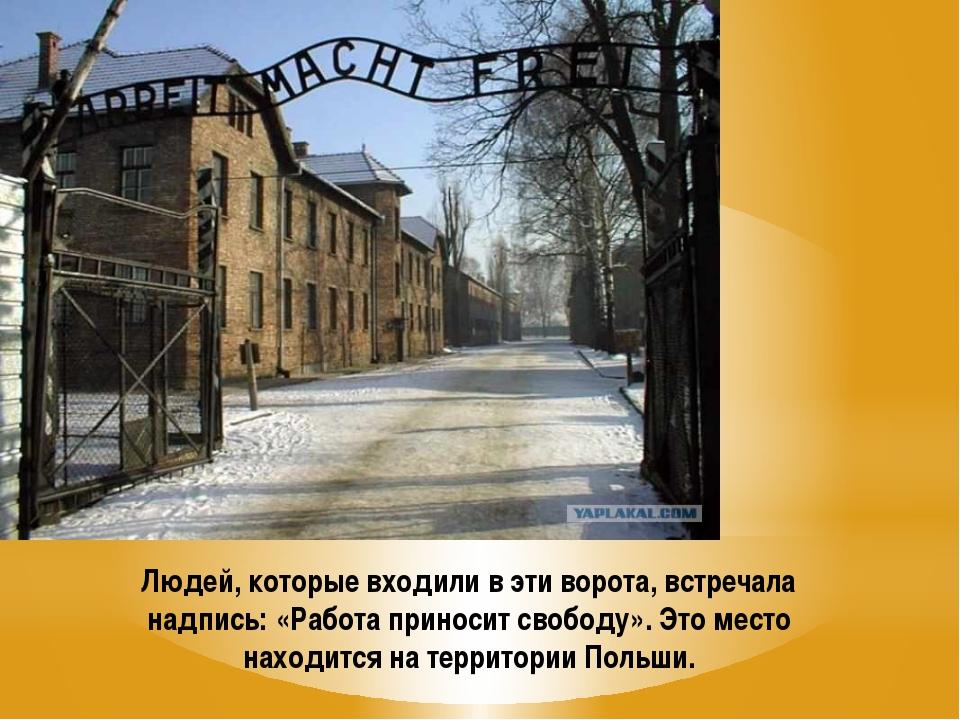 Людей, которые входили в эти ворота, встречала надпись: «Работа приносит своб...