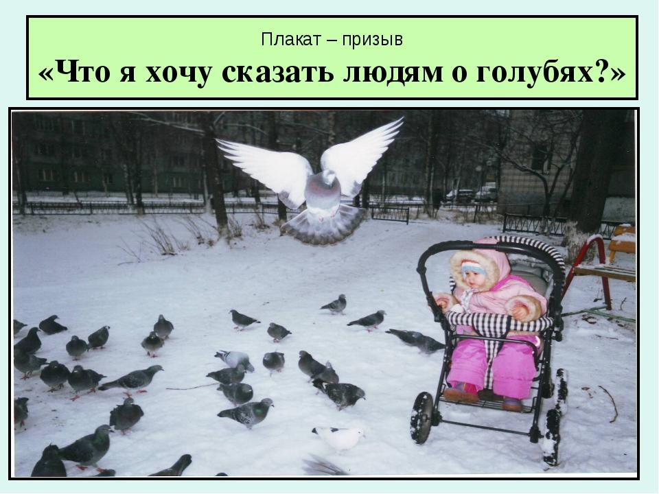 Плакат – призыв «Что я хочу сказать людям о голубях?»