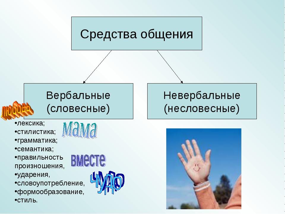 лексика; стилистика; грамматика; семантика; правильность произношения, ударе...