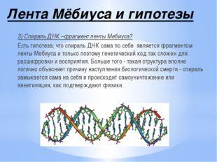 Лента Мёбиуса и гипотезы 3) Спираль ДНК –фрагмент ленты Мебиуса? Есть гипотез