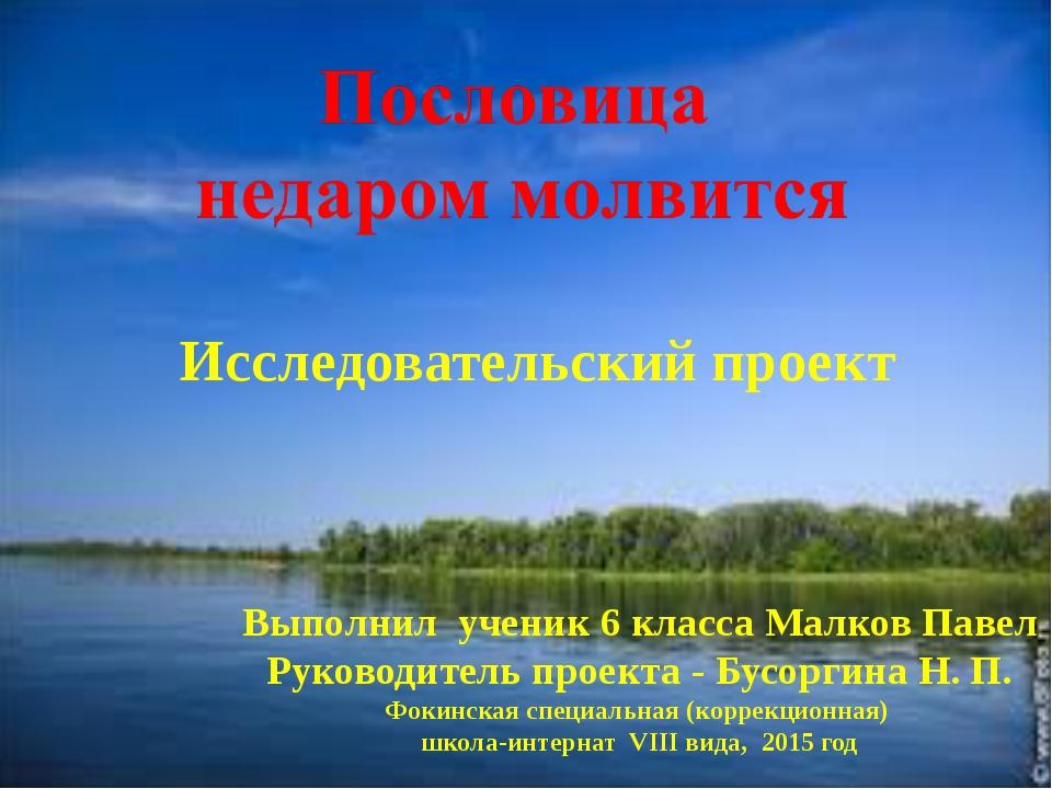 Исследовательский проект Выполнил ученик 6 класса Малков Павел Руководитель...