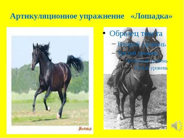 Артикуляционное упражнение «Лошадка»