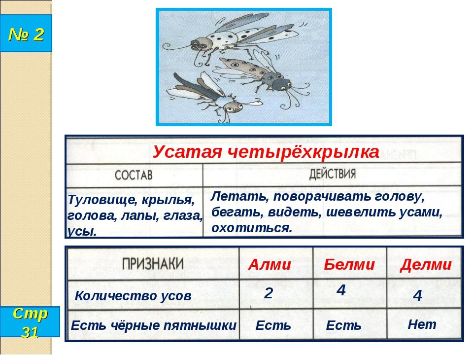 № 2 Стр 31 Усатая четырёхкрылка Туловище, крылья, голова, лапы, глаза, усы. Л...