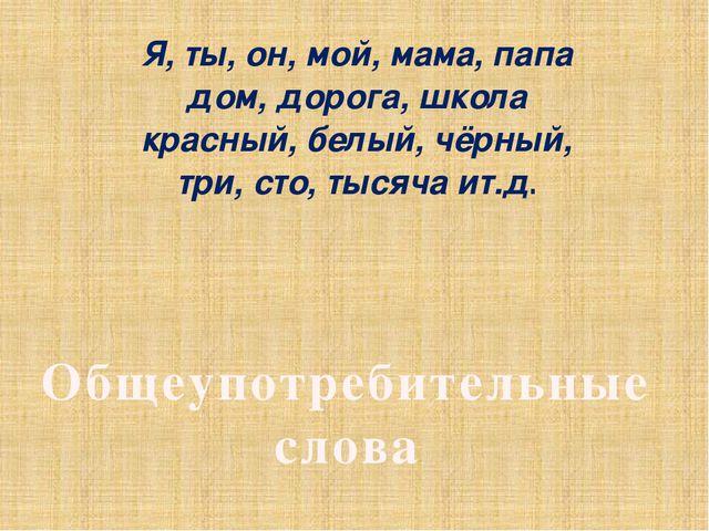 Я, ты, он, мой, мама, папа дом, дорога, школа красный, белый, чёрный, три, ст...