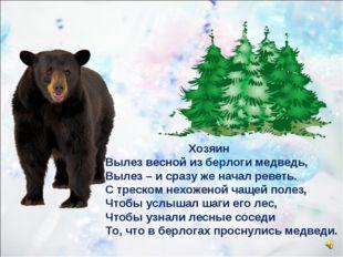 Хозяин Вылез весной из берлоги медведь, Вылез – и сразу же начал реветь. С т