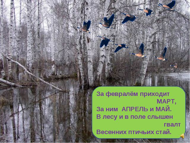 За февралём приходит МАРТ, За ним АПРЕЛЬ и МАЙ. В лесу и в поле слышен гвалт...