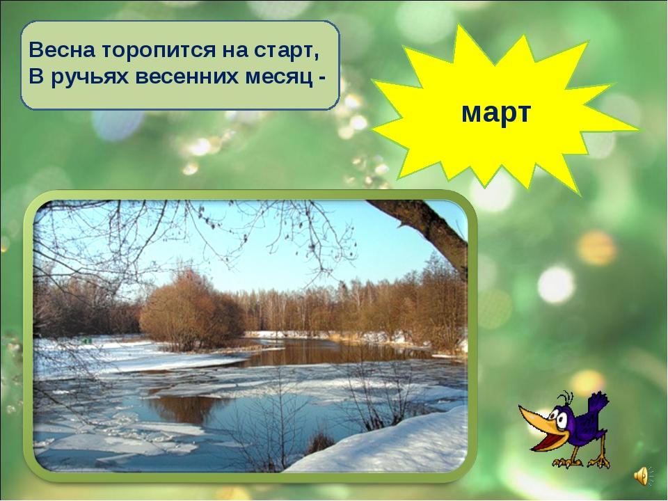 Весна торопится на старт, В ручьях весенних месяц - март