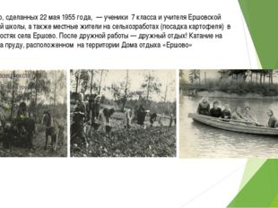 На фото, сделанных 22 мая 1955 года, — ученики 7 класса и учителя Ершовской