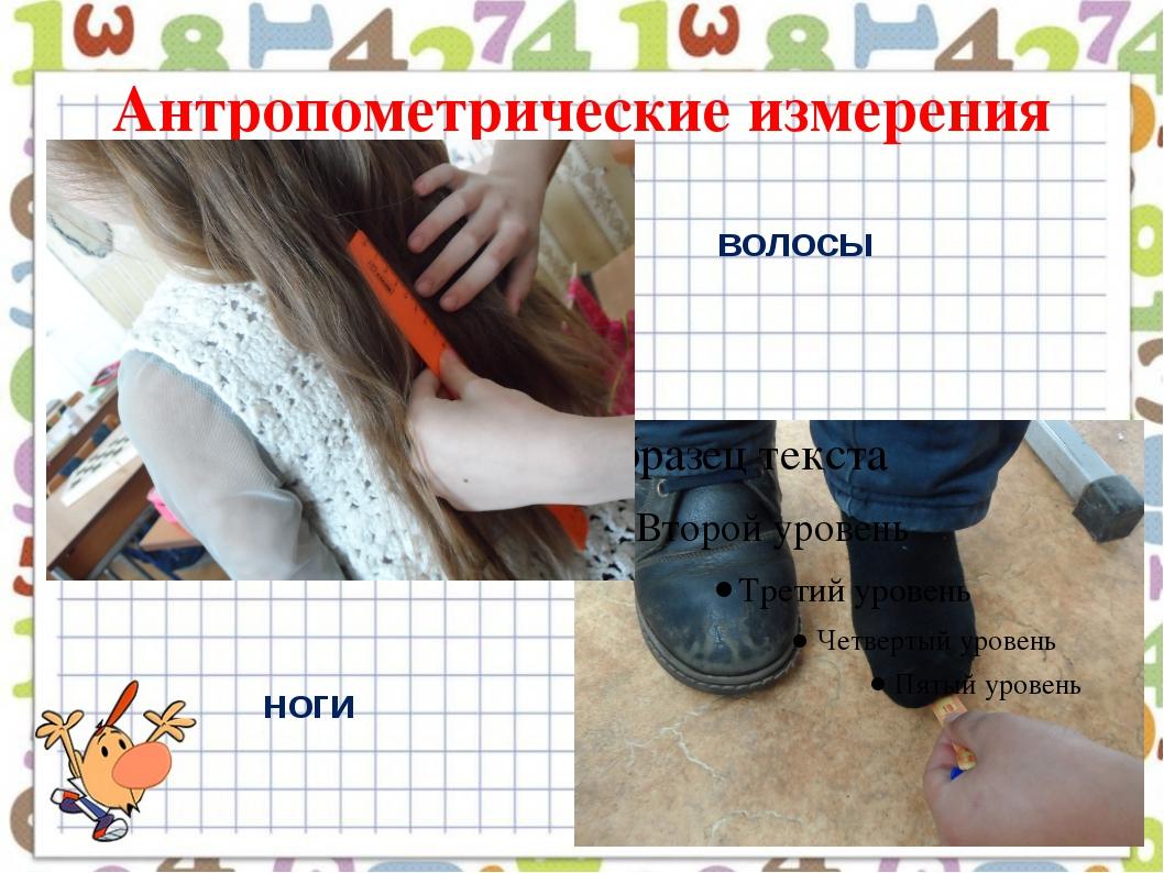 Антропометрические измерения волосы ноги