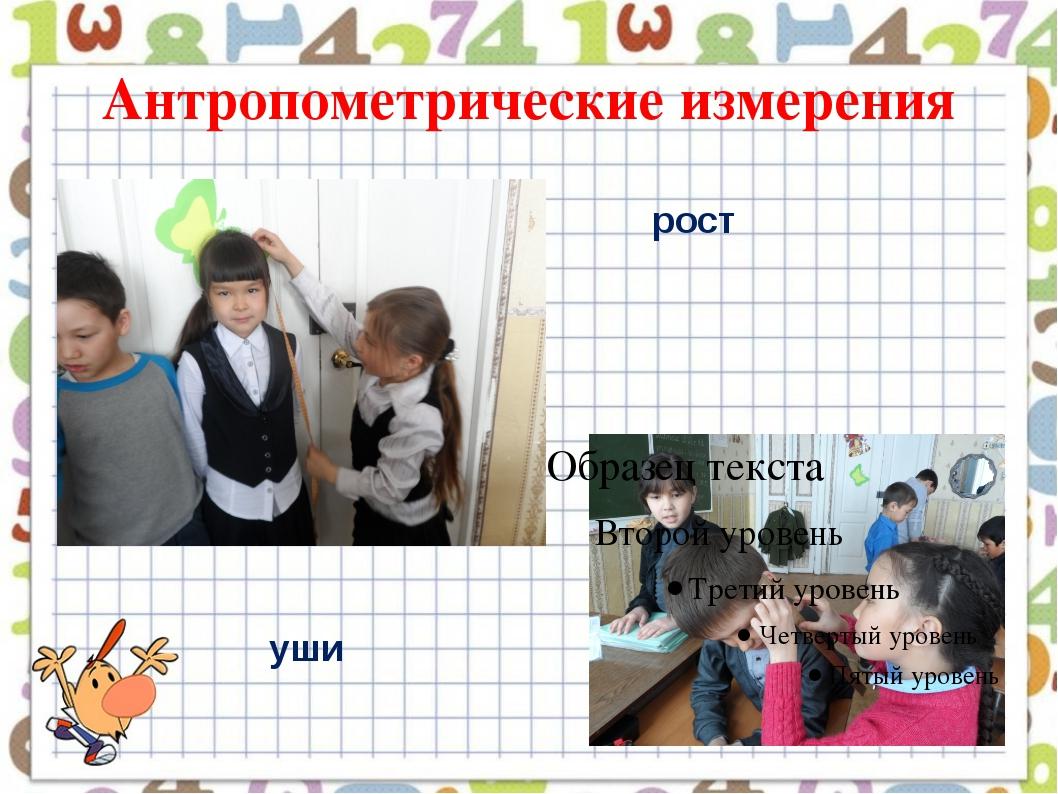 Антропометрические измерения рост уши