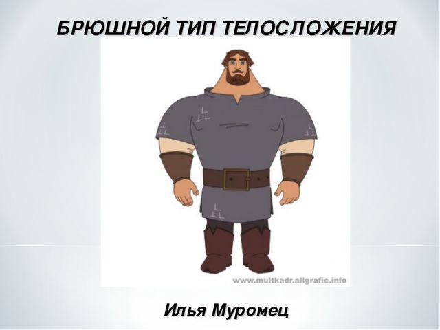 БРЮШНОЙ ТИП ТЕЛОСЛОЖЕНИЯ Илья Муромец