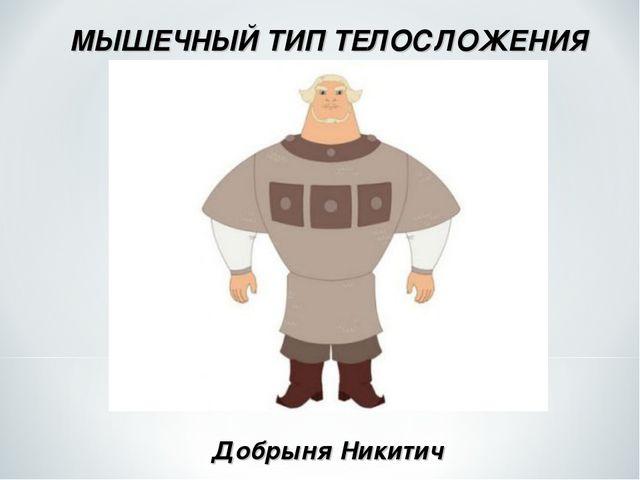 МЫШЕЧНЫЙ ТИП ТЕЛОСЛОЖЕНИЯ Добрыня Никитич