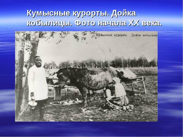 Кумысные курорты. Дойка кобылицы. Фото начала ХХ века.