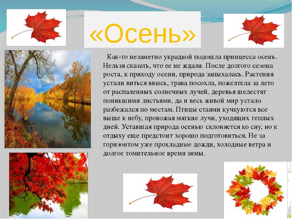 «Осень»  Как-то незаметно украдкой подошла принцесса осень. Нельзя сказать,...