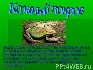 hello_html_6365780f.jpg