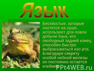 hello_html_m4b95b766.jpg