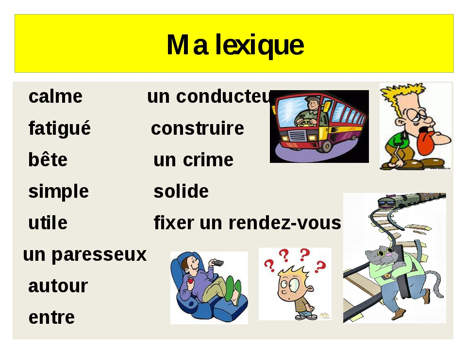 Ma lexique calme un conducteur fatigué construire bête un crime simple solide...