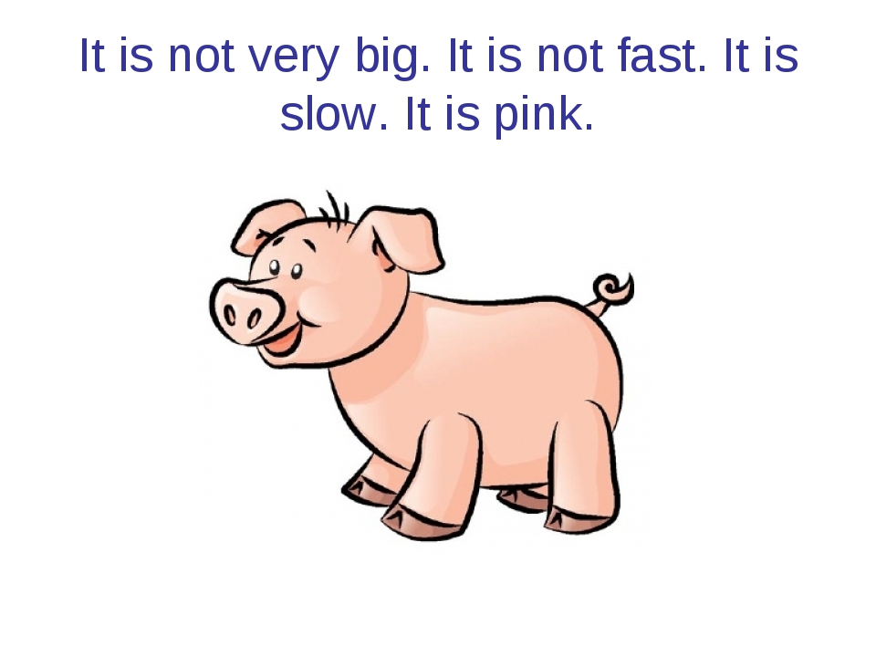 It is not very big. It is not fast. It is slow. It is pink.