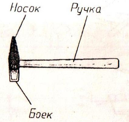 545.jpg
