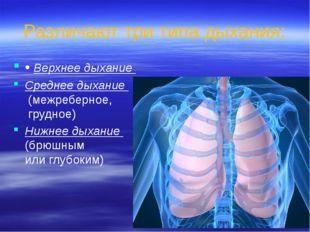 Различают три типа дыхания: • Верхнее дыхание Среднее дыхание (межреберное, г