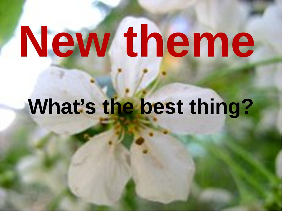 New theme What's the best thing?