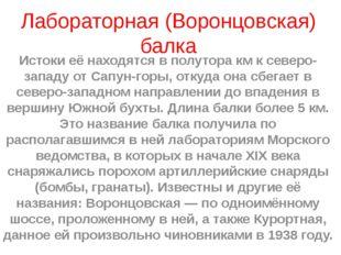 Лабораторная (Воронцовская) балка Истоки её находятся в полутора км к северо-