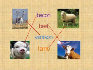 bacon beef lamb venison