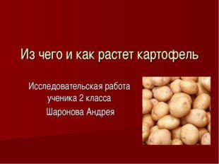 Из чего и как растет картофель Исследовательская работа ученика 2 класса Шаро
