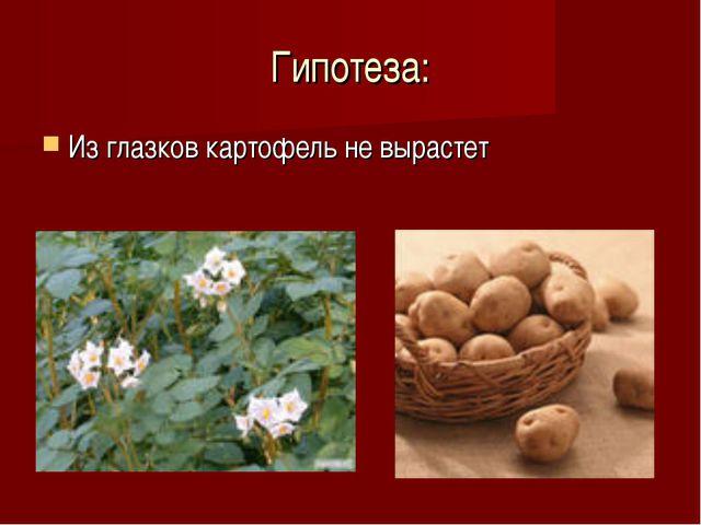 Гипотеза: Из глазков картофель не вырастет