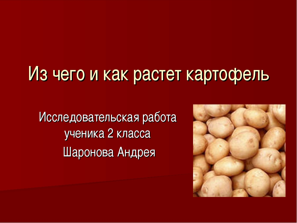 Из чего и как растет картофель Исследовательская работа ученика 2 класса Шаро...