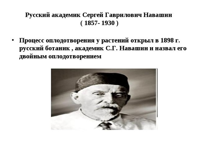 Русский академик Сергей Гаврилович Навашин ( 1857- 1930 ) Процесс оплодотворе...
