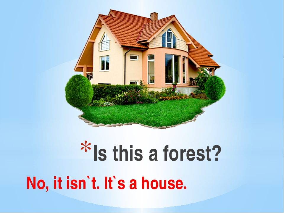 Is this a forest? No, it isn`t. It`s a house.