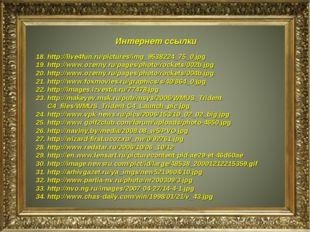 Интернет ссылки http://live4fun.ru/pictures/img_9538224_75_0.jpg http://www.o