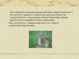 Заяц относился к покровителям растительного мира.Он знает все о лесе, и без е