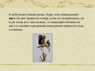 К небесным птицам грозы, бури, огня принадлежит аист.Он мог принести пожар, е