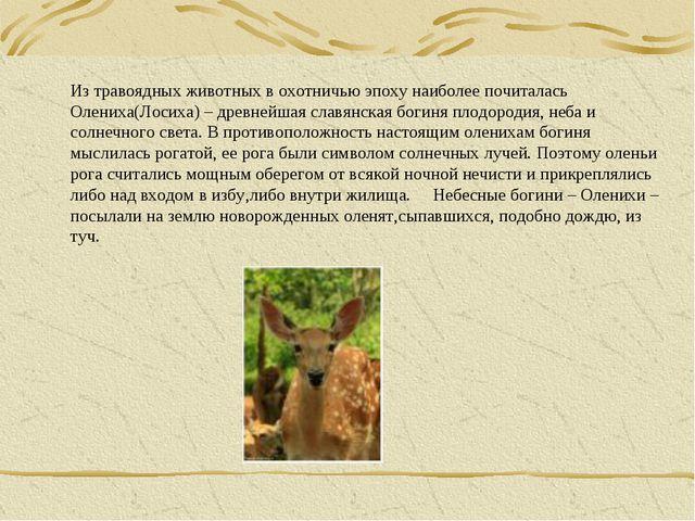 Из травоядных животных в охотничью эпоху наиболее почиталась Олениха(Лосиха)...