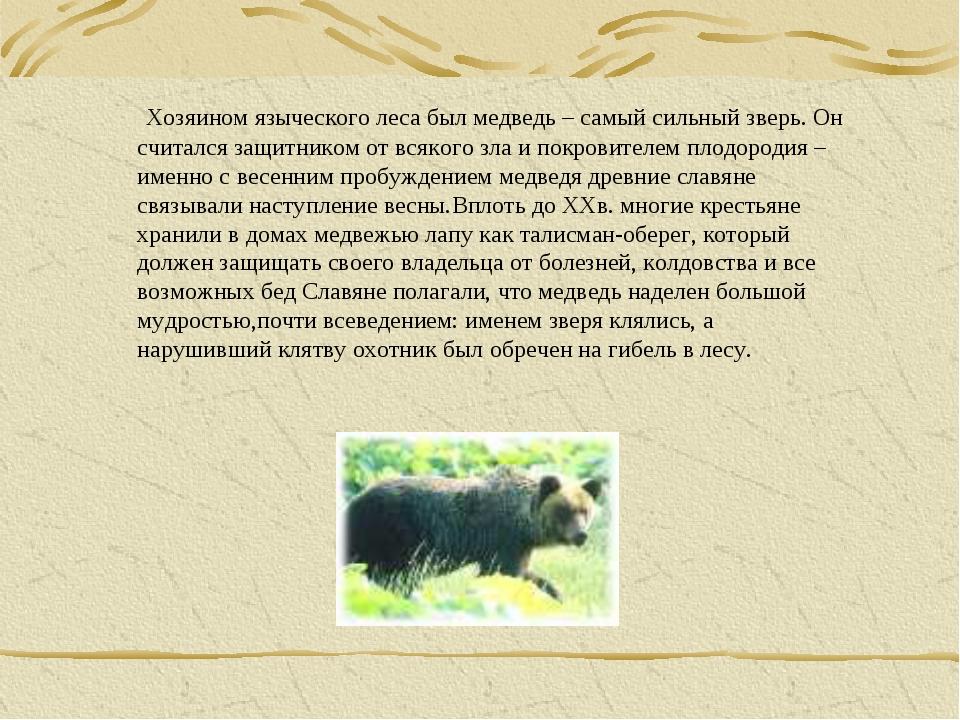 Хозяином языческого леса был медведь – самый сильный зверь. Он считался защи...