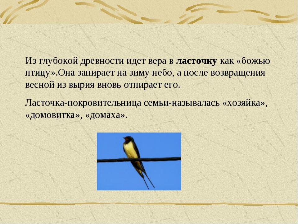 Из глубокой древности идет вера в ласточку как «божью птицу».Она запирает на...