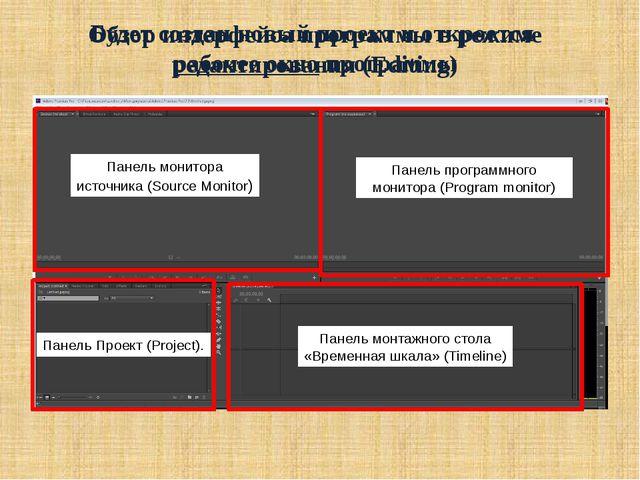 Будет создан новый проект и откроется рабочее окно программы Обзор интерфейса...