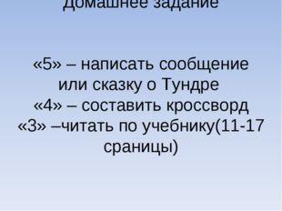 Домашнее задание «5» – написать сообщение или сказку о Тундре «4» – составить