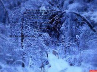 Заколдован невидимкой, Дремлет лес под сказку сна, Словно белою косынкой Прин