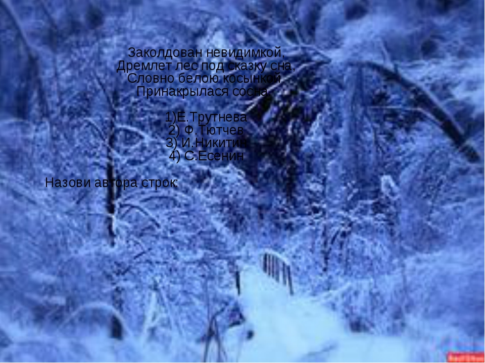 Заколдован невидимкой, Дремлет лес под сказку сна, Словно белою косынкой Прин...